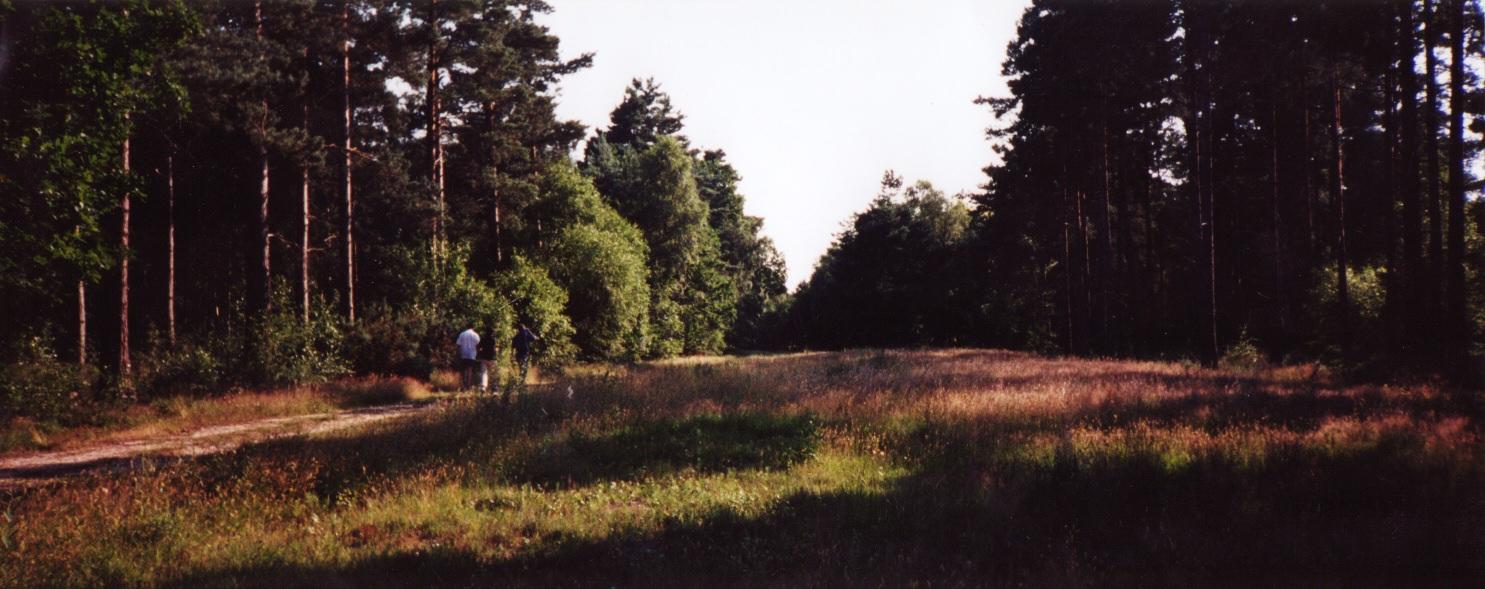 015FPC1999
