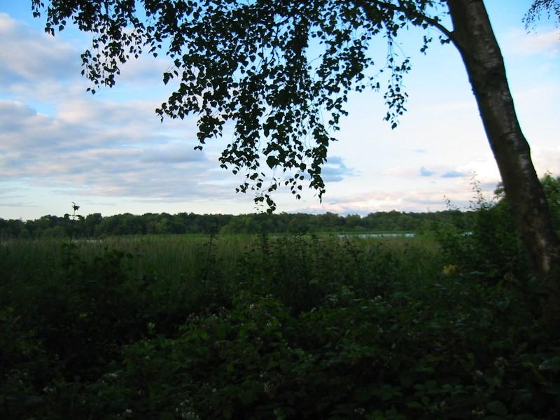 151FPC2004