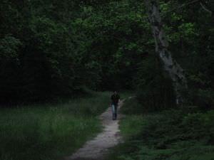 099FPC2005